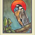 Boat-Billed Heron - Thank You by slwaller