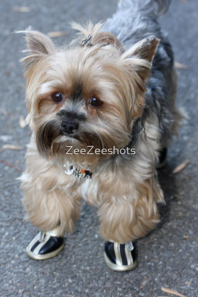 Do you like my shoes by ZeeZeeshots