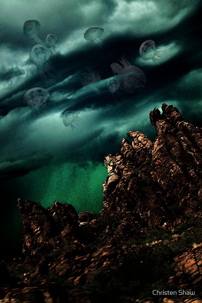 Jellyfish by Christen Shaw