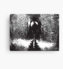 Psychedelic Shadows Canvas Print