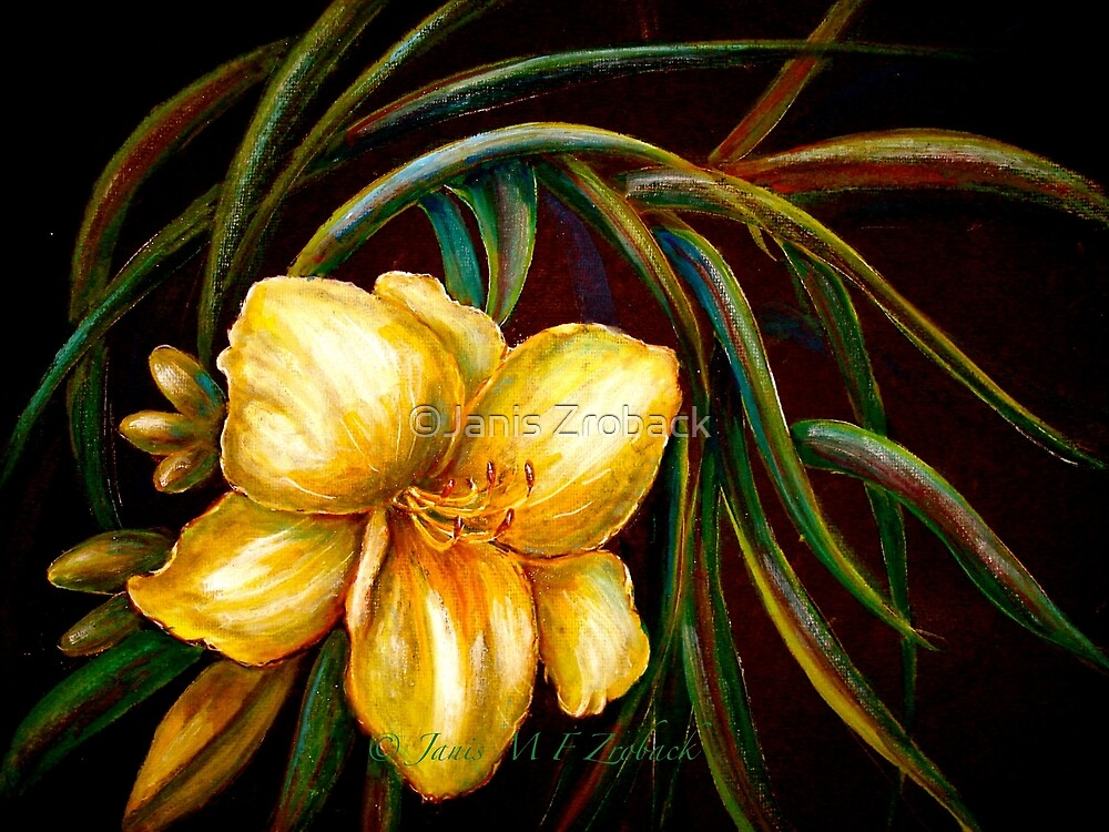 Flowers..DayLily...Joan Senior by ©Janis Zroback