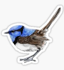 Little Wren in Natural Sticker