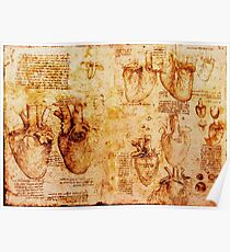 Heart And Its Blood Vessels, Leonardo Da Vinci Anatomy Drawings, Brown Poster