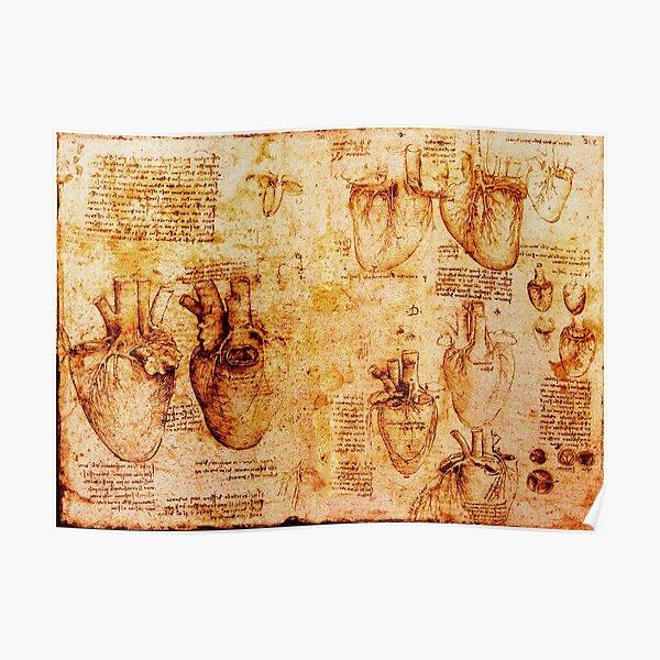 Heart And Its Blood Vessels, Leonardo Da Vinci Anatomy Drawings, Brown Poster