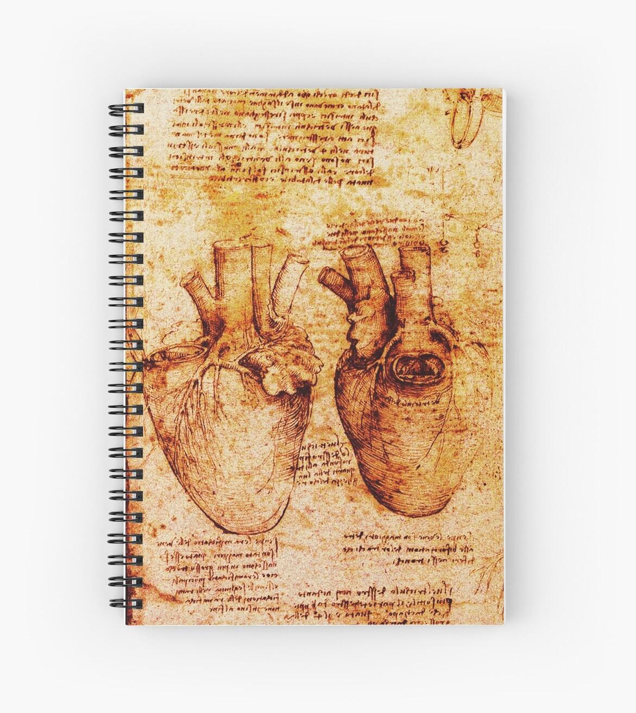 Quot Heart And Its Blood Vessels Leonardo Da Vinci Anatomy