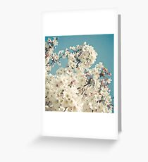 Buds in May Greeting Card