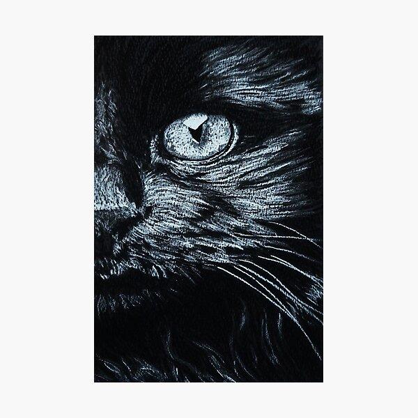 Cats eye Photographic Print