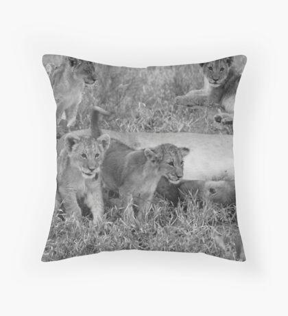 Lion Cubs, Central Kalahari Game Reserve, Botswana, Africa Throw Pillow