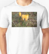 Raindrops on Crocus. T-Shirt