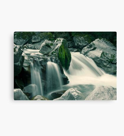 Wild Waters Canvas Print