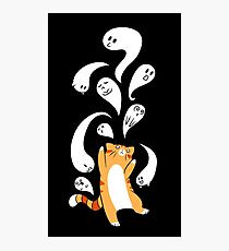 Tabby Cat Playing with Ghosts Photographic Print