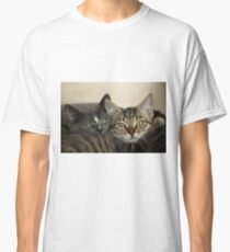 Two close kitten pussies Classic T-Shirt