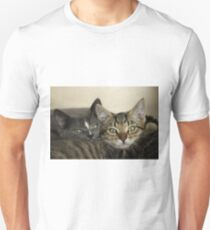 Two close kitten pussies T-Shirt