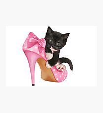 Cute Kitten with Shoe Photographic Print