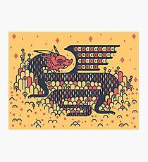 Little Dragon Boi Photographic Print