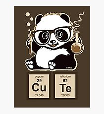 Chemistry panda discovered cute Photographic Print