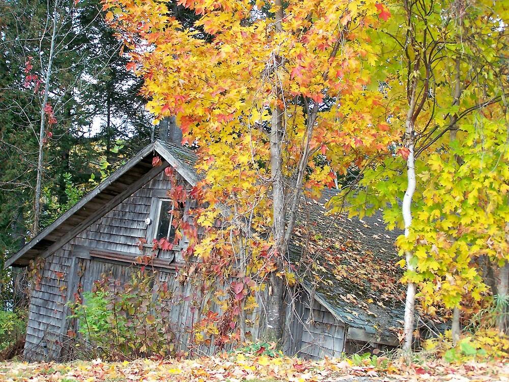 Autumn Shed by Gene Cyr