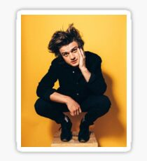 Steve harrington  Sticker