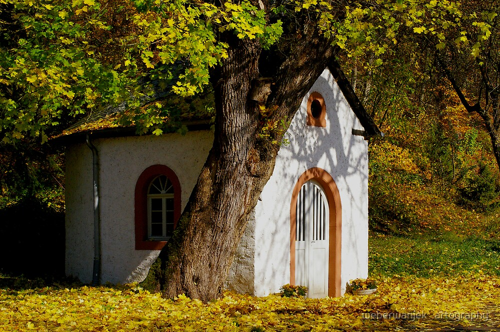 Autumn Journey Through our Forest - Little Chapel by weberwanjek   artography