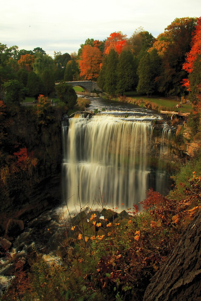 Webster's Falls by Mark Solomon