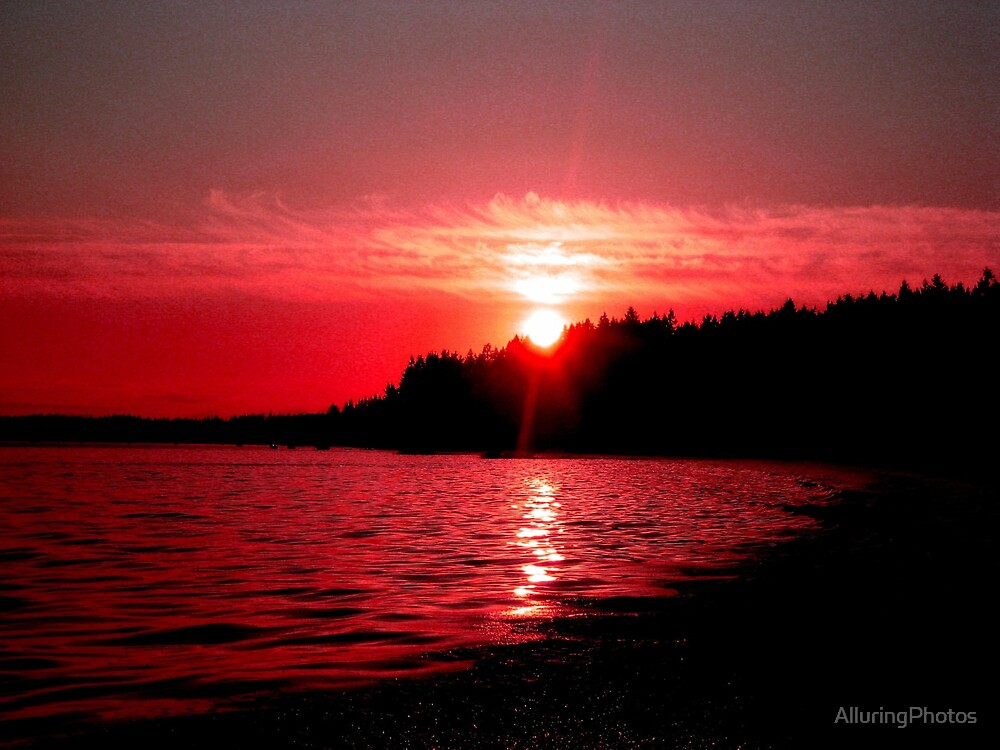 Blood Red by AlluringPhotos