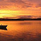 Beauty Point Tasmania Panoramic  by Glenn McLeary