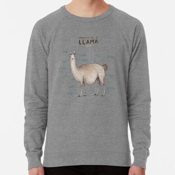 Anatomy of a Llama Lightweight Sweatshirt