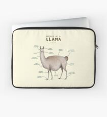 Anatomy of a Llama Laptop Sleeve