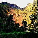 Hanakoa Valley by kevin smith  skystudiohawaii