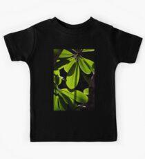 Evergreen Delight Kids Tee