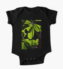 Evergreen Delight Kids Clothes