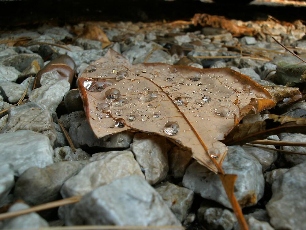 Diamonds of October by InfiniteEntropy