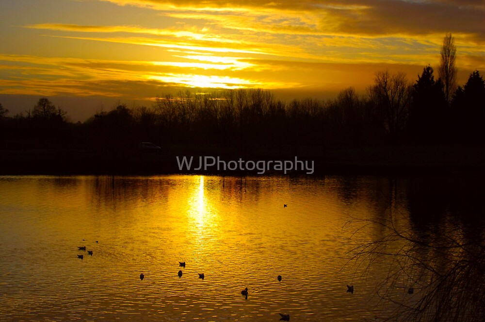 Golden View by WJPhotography
