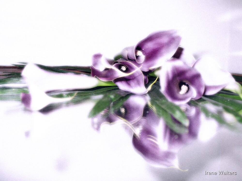 Purple Glow by Irene Walters