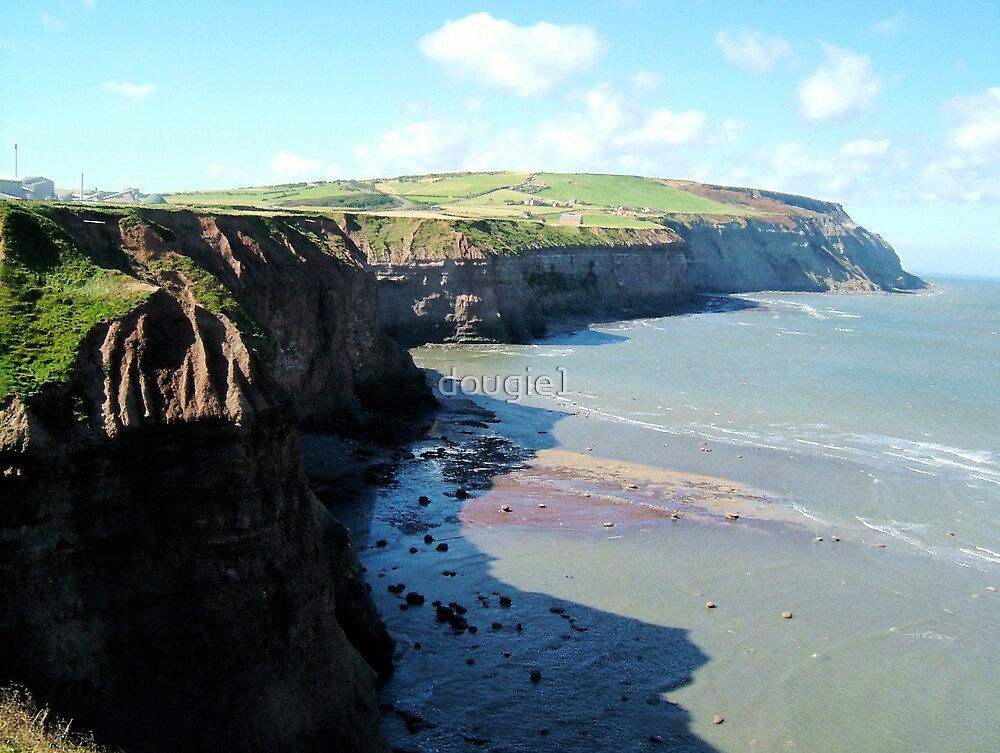 Boulby Cliff by dougie1
