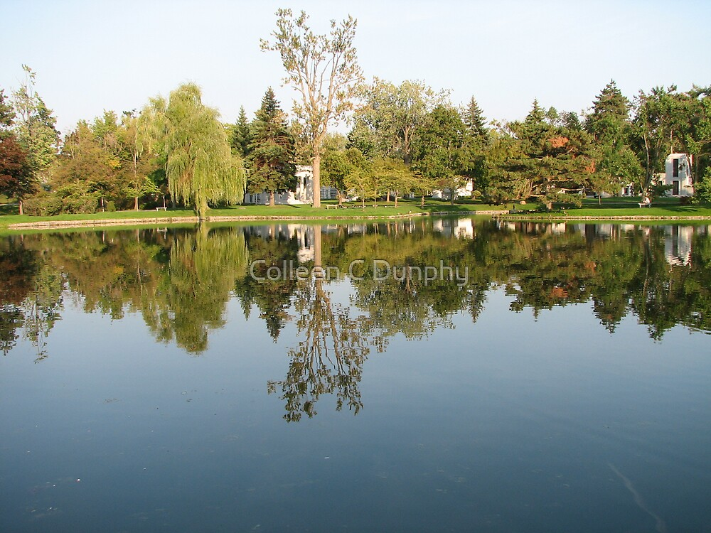Mirror Lake by Colleen C Dunphy