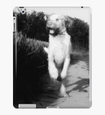 Orange and White Italian Spinone Dog in Action iPad Case/Skin