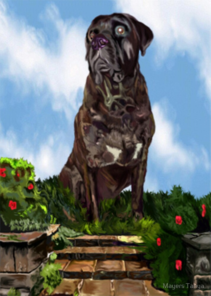 A Painting of My Mastiff Floyd by Mayers Tanya