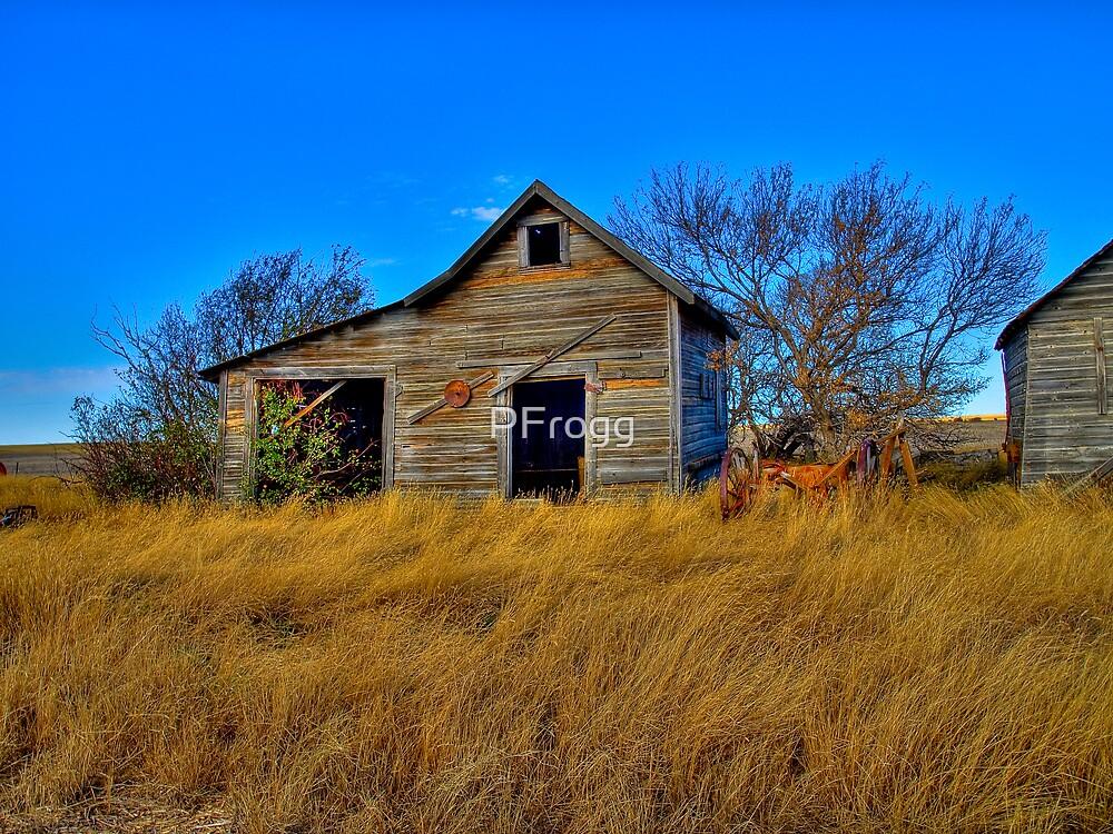 Prairie Work Shop Bunk House by PFrogg