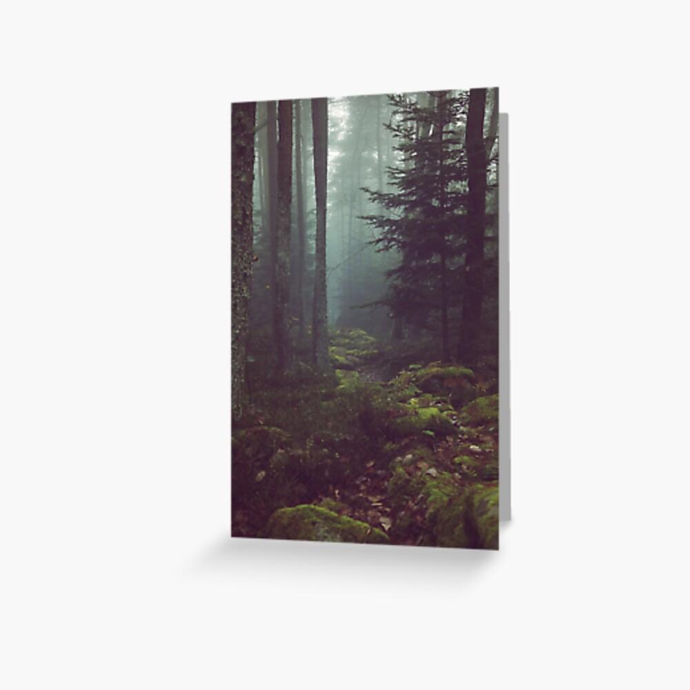 Waldnacht Grußkarte