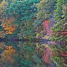 Fall Foliage by MDossat