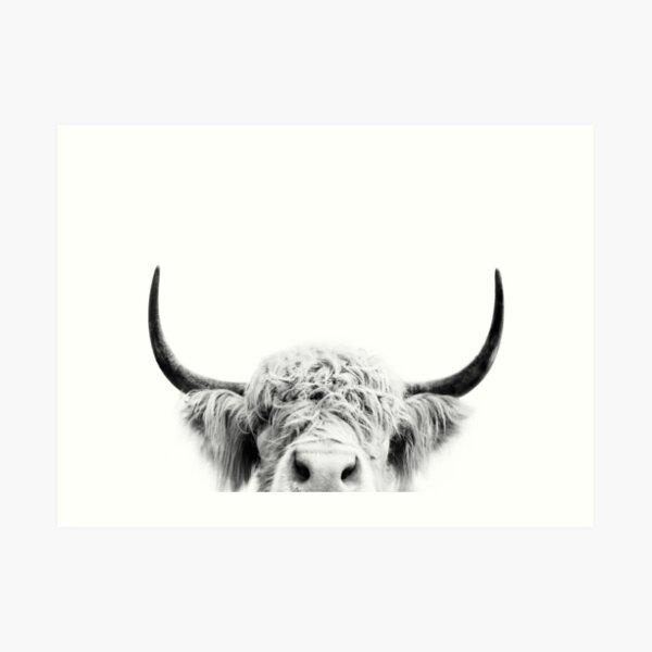 Peeking Cow Art Print