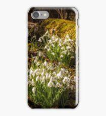 Snowdrop Woods Welford iPhone Case/Skin
