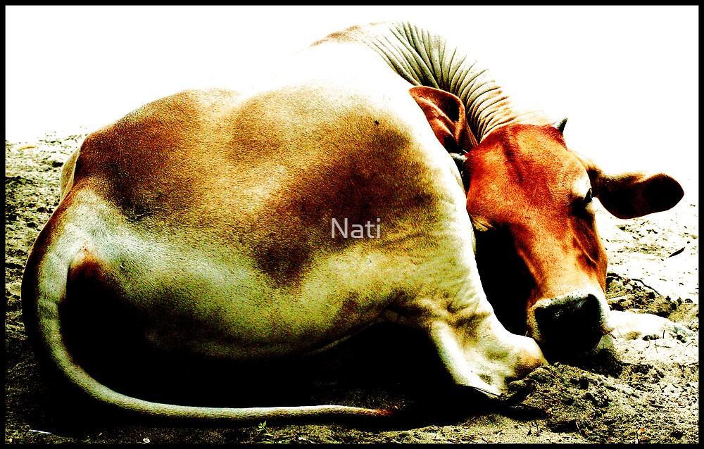 Sleep by Nati