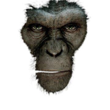 Ape by b8wsa