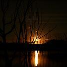 Moonrise - Lake Eildon by Alex Evans