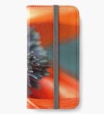 Ruin iPhone Wallet/Case/Skin