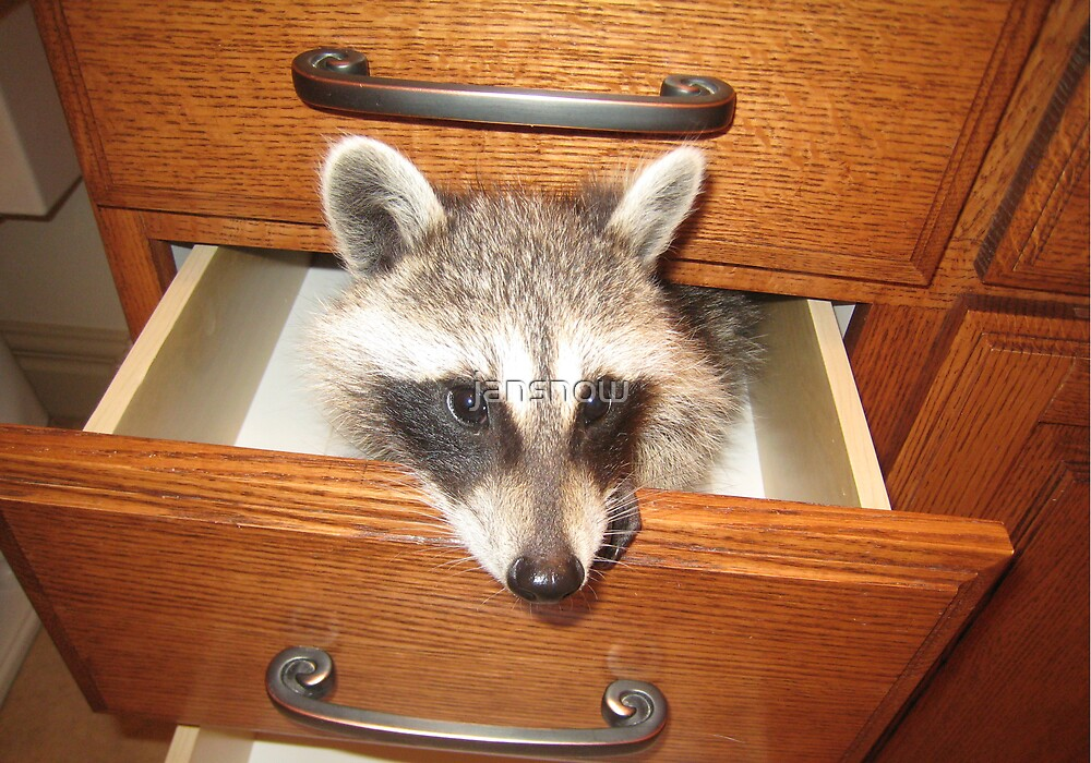 Look What's Behind Drawer #2! by jansnow