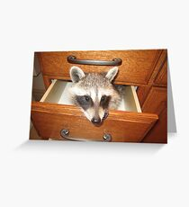 Look What's Behind Drawer #2! Greeting Card