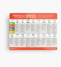 Cook Smarts' Guide to Flavoring with Spices Metal Print